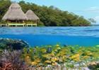 Bocas_del_Toro_-_shutterstock_90485047[1]_-vilainecrevette.JPG